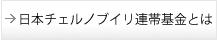 日本チェルノブイリ連帯基金とは